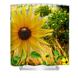 Busy Visitor Shower Curtain