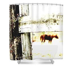 But Not Forgotten Shower Curtain by Michelle Twohig