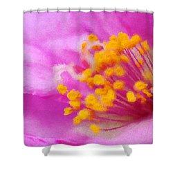 Buttercup Confection Shower Curtain