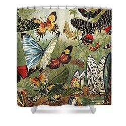 Butterflies 2 Shower Curtain by Mutzel