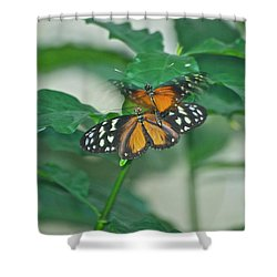 Shower Curtain featuring the photograph Butterflies Gentle Touch by Thomas Woolworth