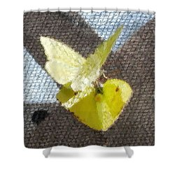 Sulfur Butterflies Mating Shower Curtain by Belinda Lee