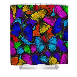 Shower Curtain featuring the photograph Butterflies In Flight Panorama by Kyle Hanson