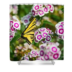 Butterfly And Blooms - Spring Flowers And Tiger Swallowtail Butterfly. Shower Curtain by Jamie Pham