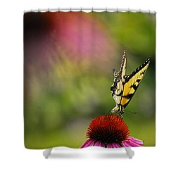 Butterfly And Cone Flower Shower Curtain by Elsa Marie Santoro