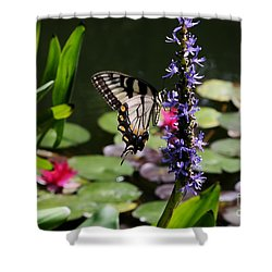 Butterfly At Lunch Shower Curtain