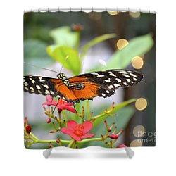 Butterfly Beauty Shower Curtain by Carla Carson