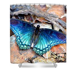 Shower Curtain featuring the photograph Butterfly Blue  by Deena Stoddard