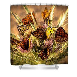 Butterfly Bouquet Shower Curtain