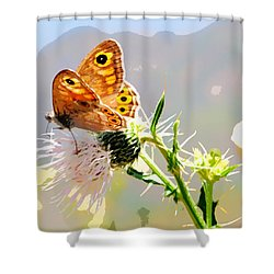 Butterfly Collect Juice  Shower Curtain