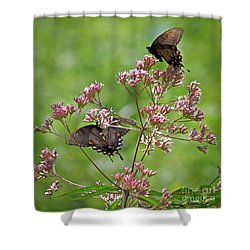 Butterfly Duet  Shower Curtain by Kerri Farley