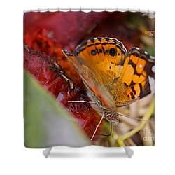 Shower Curtain featuring the photograph Butterfly by Erika Weber