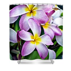 Shower Curtain featuring the photograph Butterfly Flowers by Thomas Woolworth