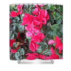 Shower Curtain featuring the photograph Butterfly Garden Red Exotic Flowers Las Vegas by Navin Joshi