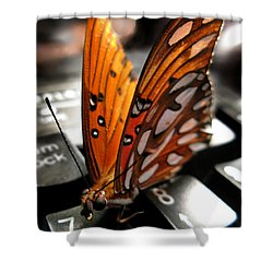 Shower Curtain featuring the photograph Butterfly Home At 7 by Jennie Breeze