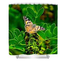 Butterfly In Paradise Shower Curtain