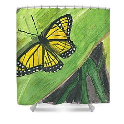 Shower Curtain featuring the painting Butterfly In Vermont Corn Field by Donna Walsh
