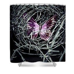 Butterfly Shower Curtain by Joana Kruse