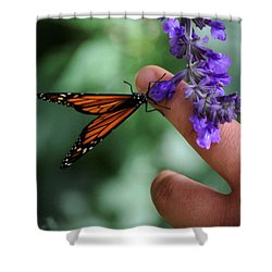 Shower Curtain featuring the photograph Butterfly by Leticia Latocki