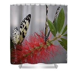 Butterfly Love Shower Curtain by Carla Carson