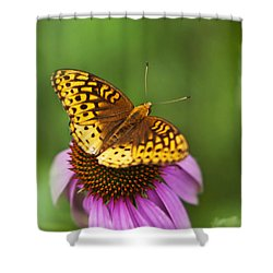 Shower Curtain featuring the photograph Butterfly Love by Christina Rollo