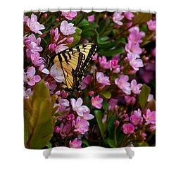 Butterfly Shower Curtain by Mark Alder