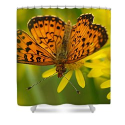 Shower Curtain featuring the photograph Butterfly by James Peterson