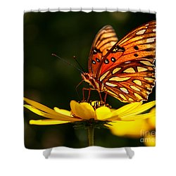 Butterfly On Flower Shower Curtain by Joan McCool
