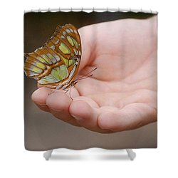 Shower Curtain featuring the photograph Butterfly On Hand by Leticia Latocki