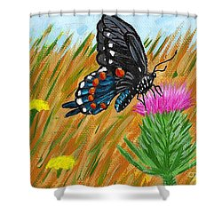 Butterfly On Thistle Shower Curtain by Vicki Maheu