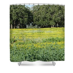 Shower Curtain featuring the photograph Butterfly Paradise by John Glass