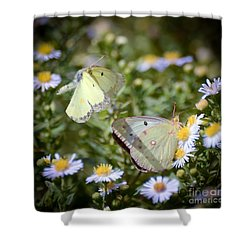 Shower Curtain featuring the photograph Butterfly Moments  by Kerri Farley