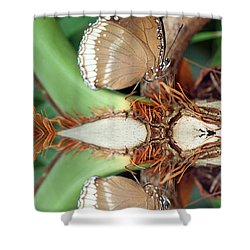 Butterfly Reflection Shower Curtain by Karen Adams