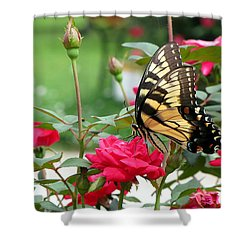 Butterfly Rose Shower Curtain by Greg Simmons