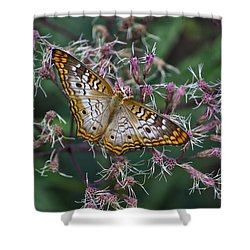 Shower Curtain featuring the photograph Butterfly Soft Landing by Thomas Woolworth