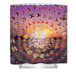 Butterfly Sunset Shower Curtain