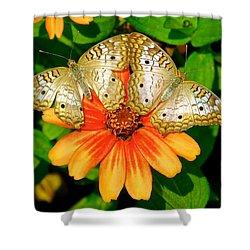 Butterfly Symmetry Shower Curtain