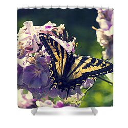 Shower Curtain featuring the photograph Butterfly by Yulia Kazansky