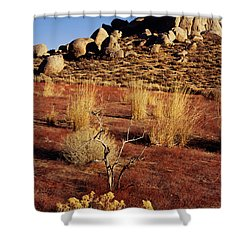 Buttermilks - Red Brush Shower Curtain