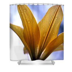 Buttersoft Droplets Shower Curtain by Deborah  Crew-Johnson