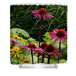 Shower Curtain featuring the photograph Button Up by Natalie Ortiz