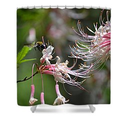 Shower Curtain featuring the photograph Buzz Buzz by Tara Potts