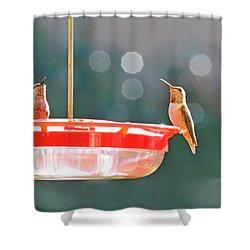 Buzzing Overhead Shower Curtain by Lynn Bauer