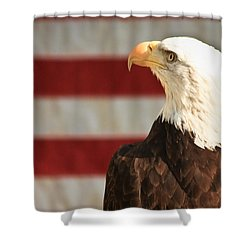 By The Dawns Early Light... Shower Curtain by Tammy Schneider