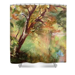 By The Greenway In Autumn- Along The Roanoke River Shower Curtain