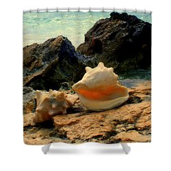 By The Sea Shower Curtain by Karen Wiles