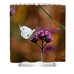 Cabbage White Butterfly In Fall Shower Curtain by Karen Adams