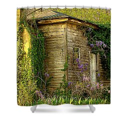 Cabin In The Back Shower Curtain by Rodney Lee Williams