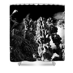 Cactus 1 Bw Shower Curtain