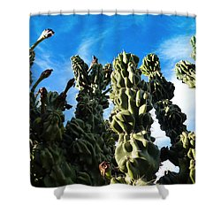 Cactus 1 Shower Curtain
